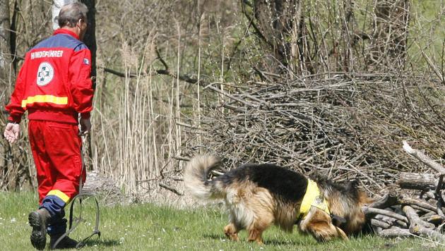 HTL-Schüler entwarfen GPS-System für Rettungshunde (Bild: Klaus Kreuzer (Symbolbild))