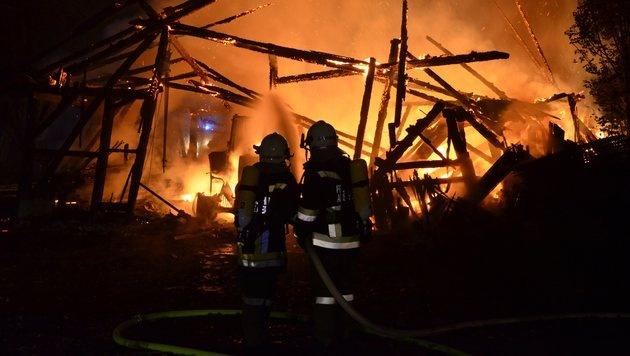Maschinenhalle in OÖ von Flammen vernichtet (Bild: FF Ansfelden/Florian Kollmann)