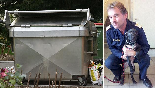 """Besitzer vom """"Welpen aus dem Müll"""" meldete sich (Bild: APA/HERBERT PFARRHOFER (Symbolbild), Polizei)"""