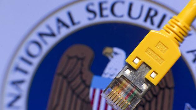 Medienbericht: Bundesheer bevorzugter NSA-Partner (Bild: dpa/Jens Büttner)