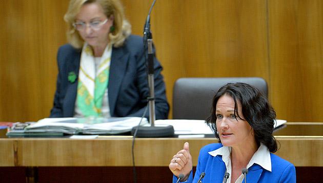 Grüne fordern U-Ausschuss zu Budgetloch (Bild: APA/Roland Schlager)
