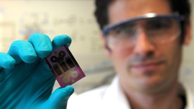 Schweizer entwickeln elektronischen Blutkreislauf (Bild: IBM Research)