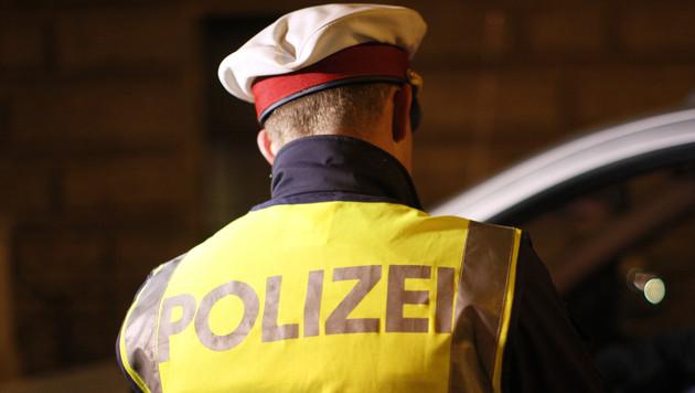 Ruhestörung war Hilferuf: Mann nach Sturz gerettet (Bild: APA/GEORG HOCHMUTH)