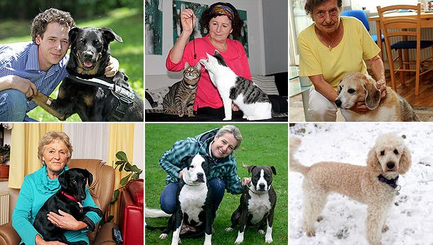 Diese Tiere und ihre Besitzer sagen Danke (Bild: Terk, Tomschi, Radspieler, Groh, Mueller, Tierheim Linz)