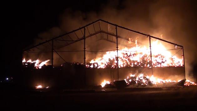 21 Feuer in NÖ gelegt: Polizei sucht Brandstifter (Bild: Einsatzdoku Lechner)