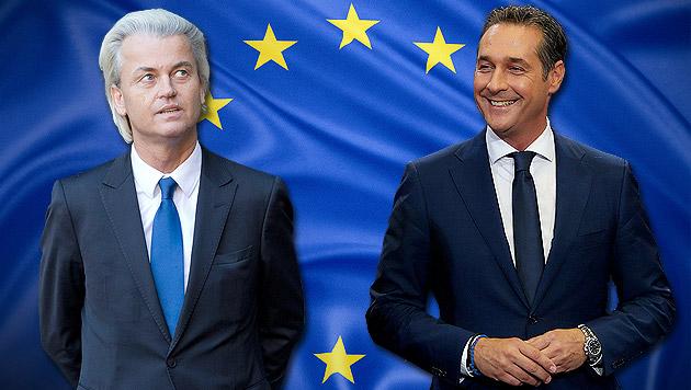 Strache schmiedet jetzt rechte EU-Allianz (Bild: thinkstockphotos.de, EPA, AP, krone.at-Grafik)
