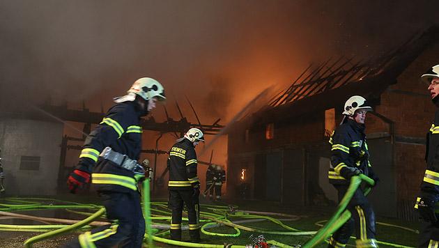 Feuer auf Bauernhof in OÖ: Brandstifter am Werk (Bild: Matthias Lauber)