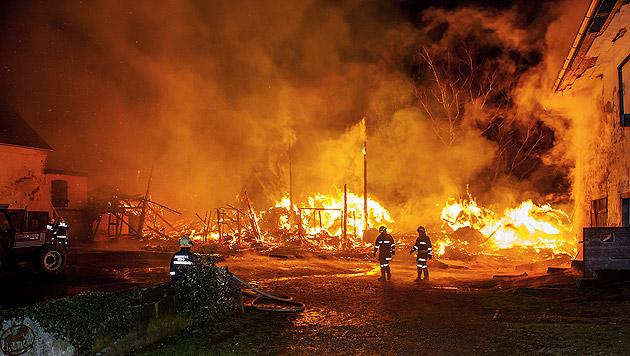 OÖ: Feuerinferno auf Reiterhof - 4 Pferde verendet (Bild: APA/MANFRED FESL)