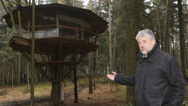 OÖ: Kurioser Rechtsstreit um Baumhaus entbrannt (Bild: Daniel Scharinger)