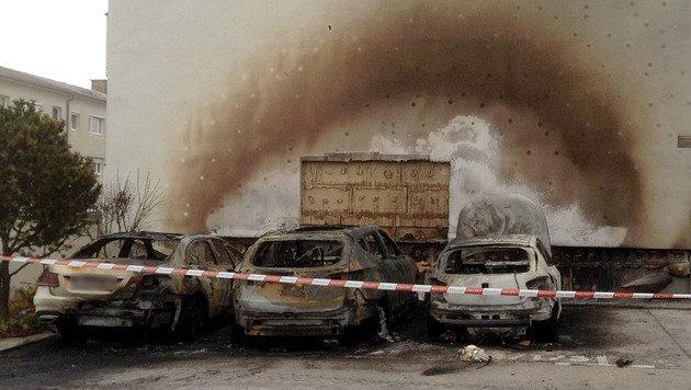 Drei Autos gingen in Eisenstadt in Flammen auf (Bild: APA/CHRISTIAN GMASZ)