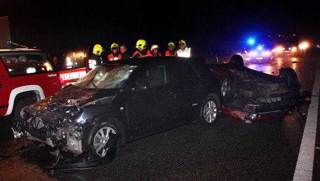 NÖ: Autos in Dunkelheit mit Wildschwein kollidiert (Bild: APA/STADTFEUERWEHR TULLN)