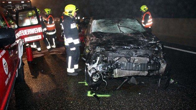 NÖ: Autos in Dunkelheit mit Wildschwein kollidiert (Bild: STADTFEUERWEHR TULLN)
