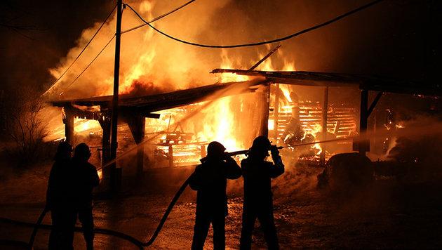 Wirtschaftsgebäude stand in Flammen: 3 Verletzte (Bild: APA/FF HAFENDORF)