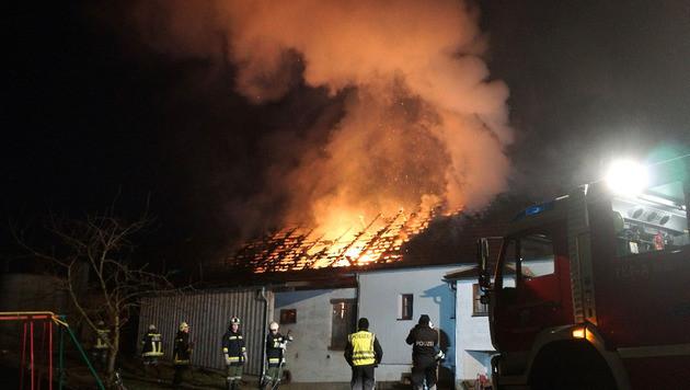 Bauernhofbrand: 31 Kühe vor Flammen gerettet (Bild: APA/FF SARLEINSBACH)