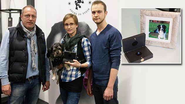 """""""Große Chance""""-Hund """"Esprit"""" ist jetzt Edelstein (Bild: Mevisto, krone.at-Grafik)"""