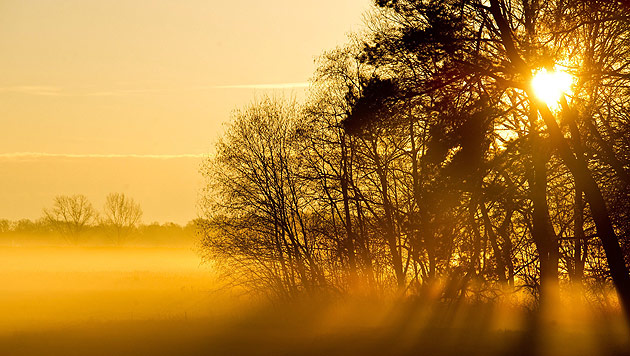Nach sonnigem Wochenstart zieht Nebel übers Land (Bild: APA/EPA/PATRICK PLEUL)