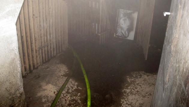 Kellerbrandserie in Graz: Sechs Menschen verletzt (Bild: APA/BF GRAZ)