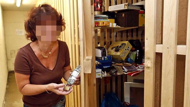 Ktn: Polizei legt krimineller Jugendbande Handwerk (Bild: Markus Tschepp)