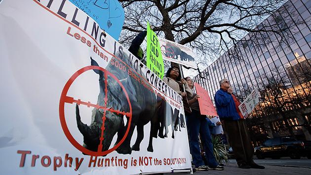 """Texaner erlegt seltenes Nashorn - """"für Tierschutz"""" (Bild: AP)"""