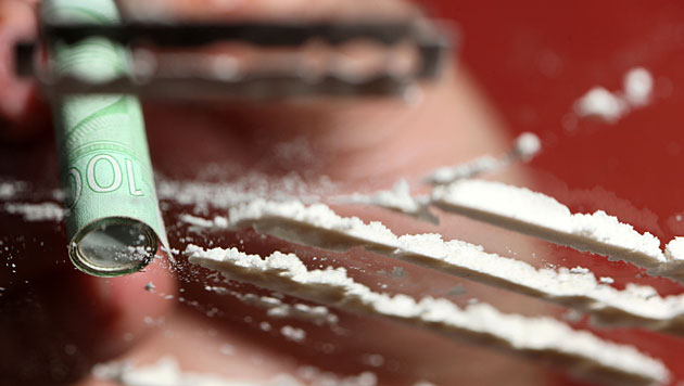 Vier Tonnen Kokain in den Niederlanden entdeckt (Bild: dpa/Patrick Pleul)