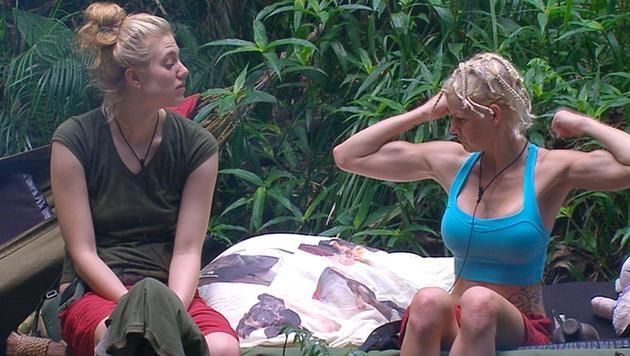 Das Dschungelcamp im Nationenvergleich (Bild: RTL)