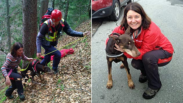 Ktn: Hund über steilen Abhang gestürzt - gerettet (Bild: Bergrettung Hermagor)
