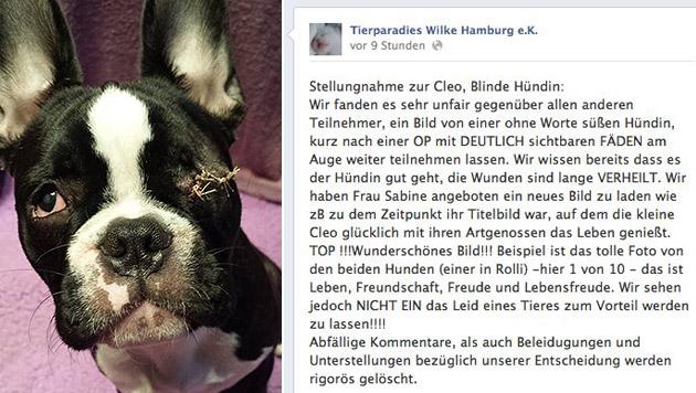 """Hündin zu """"unästhetisch"""" für Online-Fotowettbewerb (Bild: Sabine Marzi, facebook.com)"""