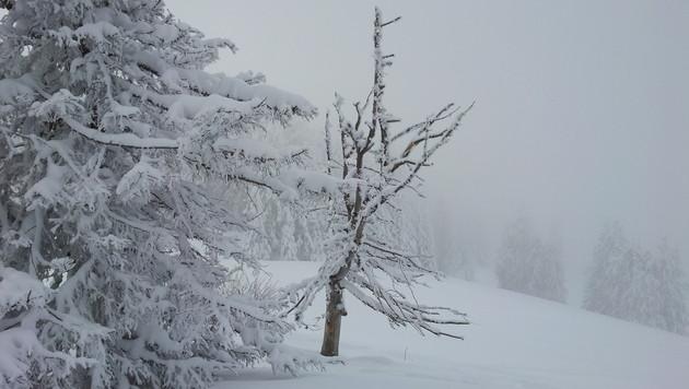 Winterchaos im Süden fordert mehrere Todesopfer (Bild: Scoopshot/Domitius Atzl)