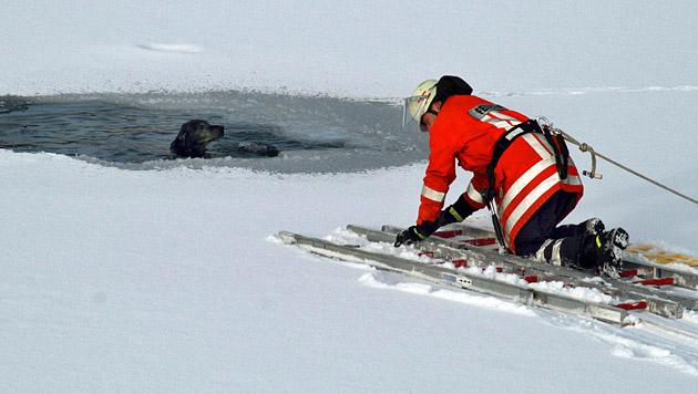 Bub wollte Hund retten und fiel in eiskalten Teich (Bild: dpa/Stefan Rampfel (Symbolbild))