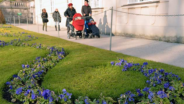 Frühling gibt ein Gastspiel - aber mit Störungen (Bild: APA/Barbara Gindl)