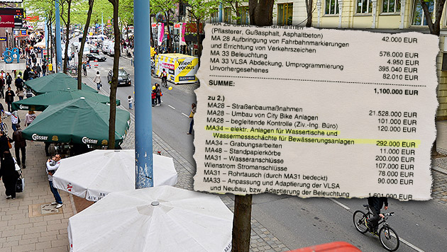 "Fuzo-Umbau kostet schon jetzt 1 Million Euro mehr (Bild: APA/HERBERT NEUBAUER, ""Krone"", thinkstockphotos.de)"