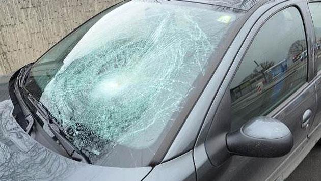 80-Jährige auf Schutzweg von Pkw angefahren - tot (Bild: Polizei)