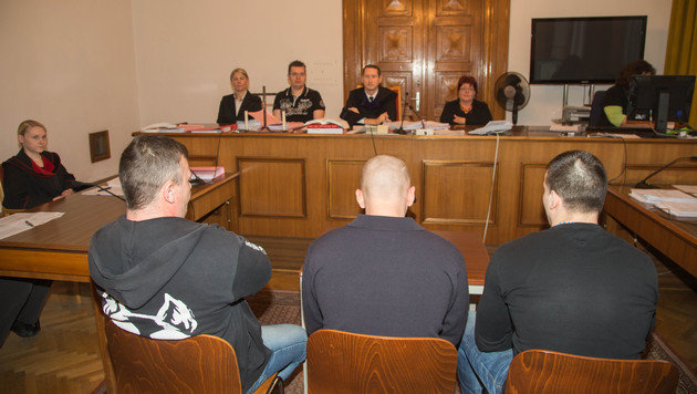 Einbrecher-Trio vor Gericht: Zwei Verurteilungen (Bild: Neummayr/MMV)