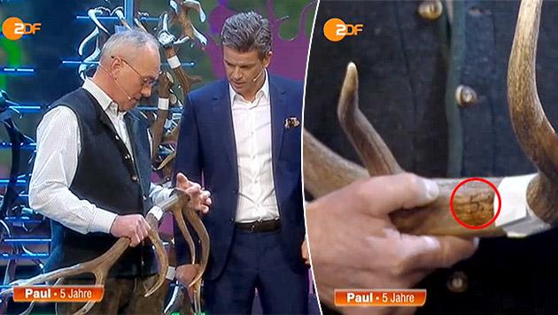 Hat Vorarlberger bei Geweih-Wette betrogen? (Bild: Screenshot: ZDF Mediathek)
