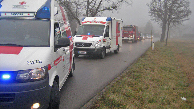 Auto kracht in NÖ gegen Baum: Beifahrerin (16) tot (Bild: Freiwillige Feuerwehr Pottendorf)