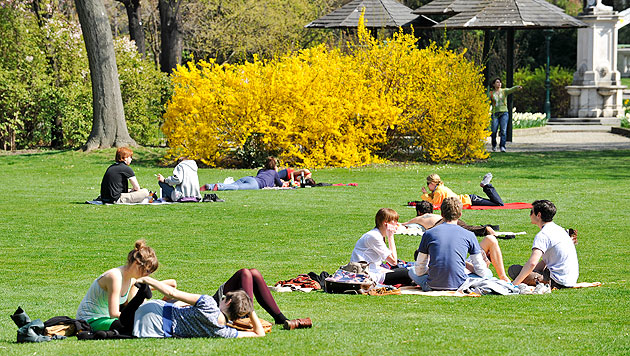 Wetterprognose lässt Frühlingsgefühle aufkommen (Bild: APA/HERBERT NEUBAUER (Symboldbild))