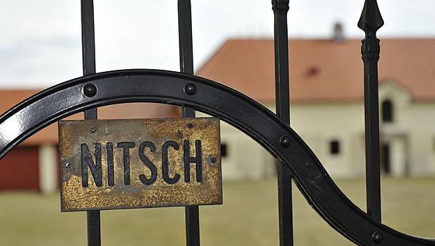 Schwarzgeld gebunkert? Razzia bei Hermann Nitsch (Bild: Imre Antal)