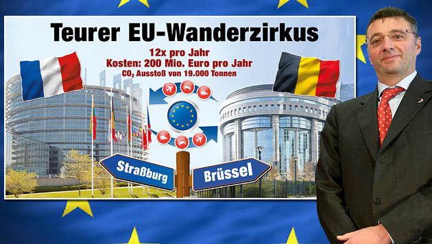 SPÖ-Mandatar ruft zu Straßburg-Boykott auf (Bild: APA/HERBERT NEUBAUER, Krone-Grafik, thinkstockphotos.de)