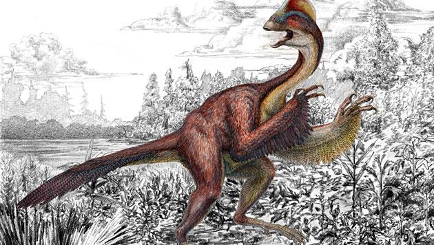 Künstlerische Darstellung der Dinosaurier-Art Anzu wyliei (Bild: Carnegie Museum of Natural History, Mark Klingler)