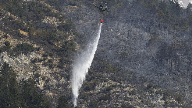 Abgebrannter Berg wird per Heli aufgepflanzt (Bild: APA/ZEITUNGSFOTO.AT/DANIEL LIEBL)