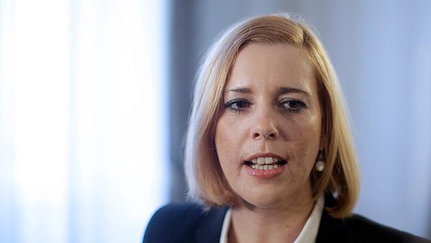SPÖ will Strafen auch bei Steuer-Selbstanzeigen (Bild: APA/GEORG HOCHMUTH)