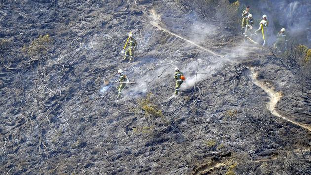 Waldbrand in Tirol: Verursacher droht Gefängnis (Bild: APA/ZEITUNGSFOTO.AT/DANIEL LIEBL)