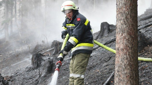 Waldbrand in NÖ nach rund 24 Stunden gelöscht (Bild: APA/BFKDO LILIENFELD/SB THOMAS TEIS)