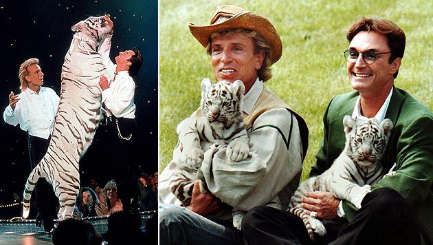 Tiger, Tricks und Tragik: Magier Siegfried wird 75 (Bild: dpa/Robert Fishman, Fotoreport)