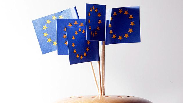 64 Prozent für Verbleib in EU, 24 Prozent dagegen (Bild: APA/Georg Hochmuth)