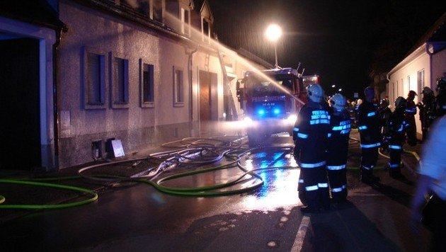 Brände im Burgenland hielten Florianis auf Trab (Bild: FF Purbach)