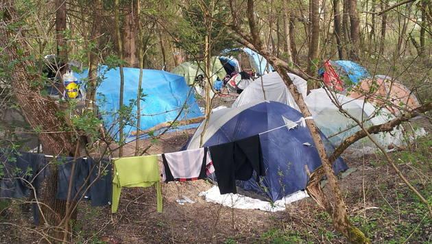 Bettler-Camp in Tirol: Müllberge sorgen für Ärger (Bild: Andreas Moser)