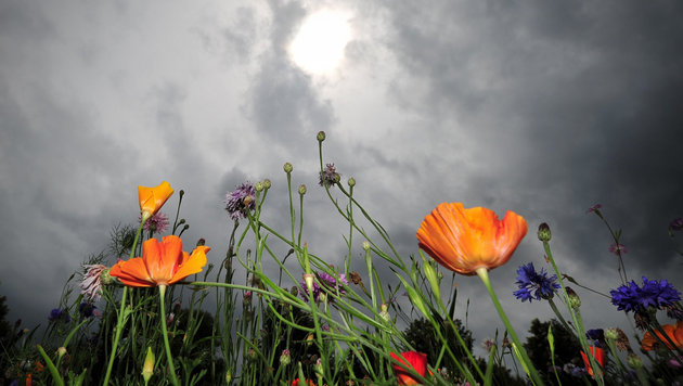 Aprilwetter bleibt uns auch im Mai erhalten (Bild: dpa/Jan-Philipp Strobel)