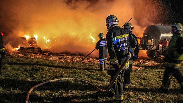 Brennende Strohballen forderten Florianis in NÖ (Bild: Daniel Wirth/www.bfkdo-baden.com)