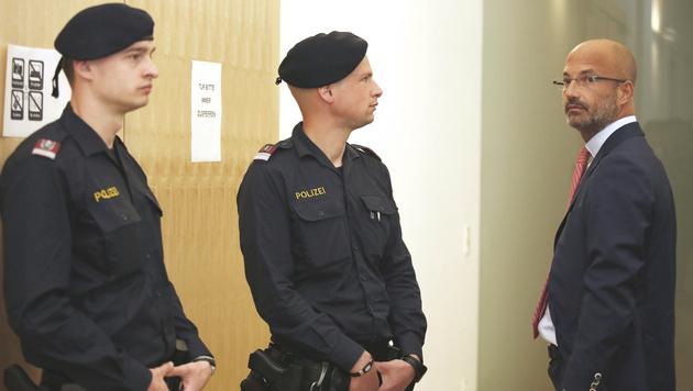 Brandstiftung: Fünf Jahre Haft für Ex-Rotlichtboss (Bild: APA/RUBRA)